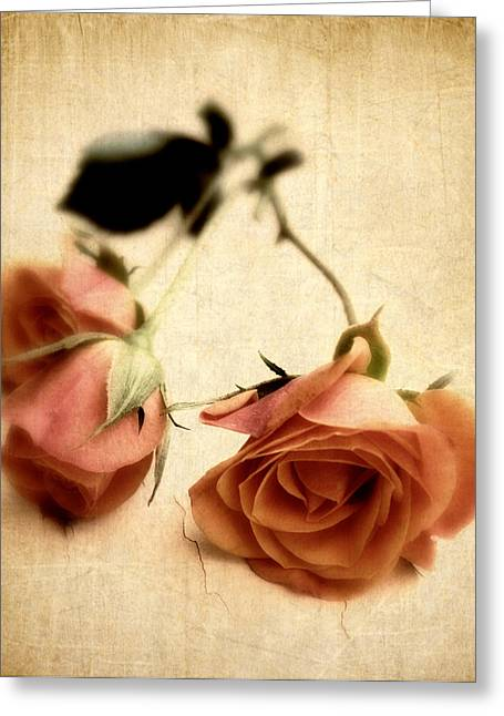 Vintage Rose Greeting Card by Jessica Jenney