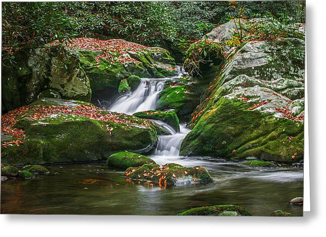 Waterfall Great Smoky Mountains  Greeting Card by Rich Franco