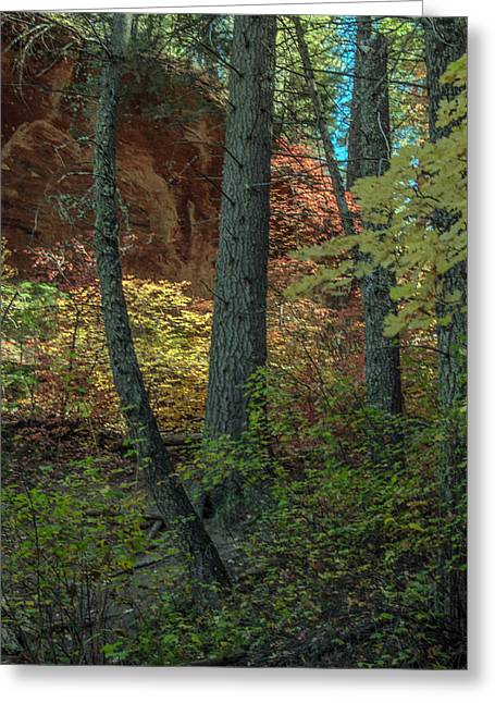 West Fork Fall Color Greeting Card