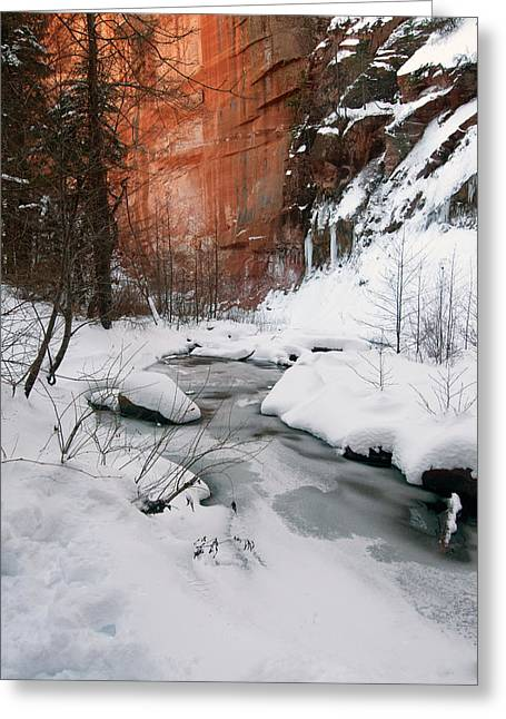 16x20 Canvas - West Fork Snow Greeting Card by Tam Ryan