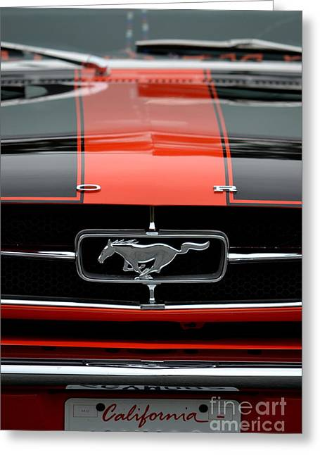 65 Mustang Greeting Card by Dean Ferreira