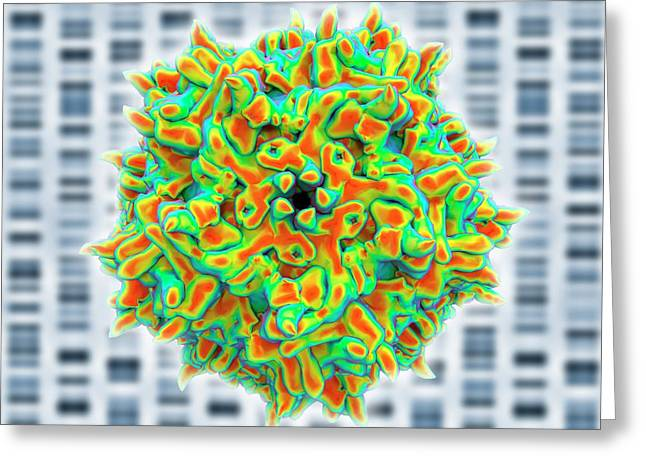 Adeno-associated Virus Greeting Card