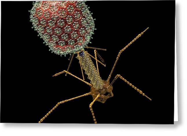 Bacteriophage T4, Artwork Greeting Card by Russell Kightley