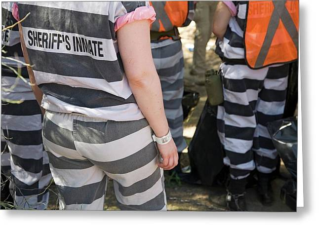 Chain Gang Greeting Card by Jim West