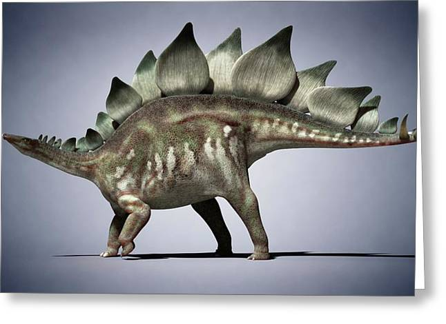 Dinosaur Greeting Card by Sciepro