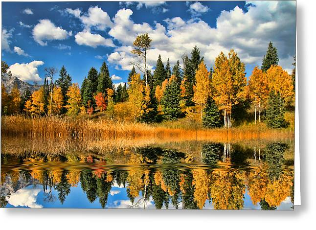 Fall Refelctions Greeting Card