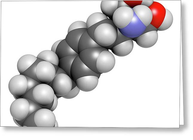 Fingolimod Multiple Sclerosis Drug Greeting Card by Molekuul