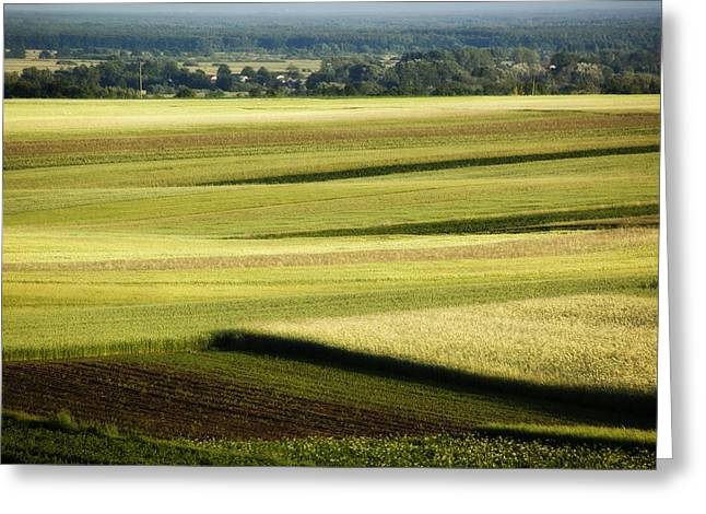 Landscape Greeting Card by Anna Gora