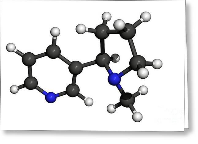 Nicotine Molecule Greeting Card