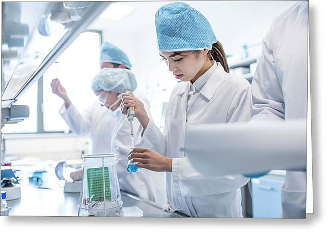 Scientists Working In Lab Greeting Card by Science Photo Library