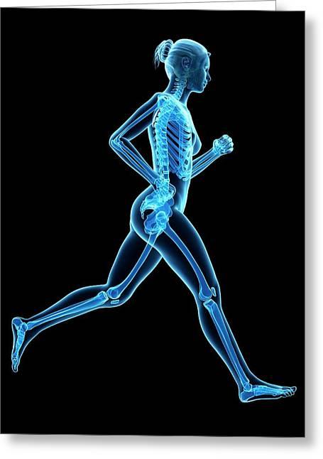 Skeletal System Of A Runner Greeting Card by Sebastian Kaulitzki