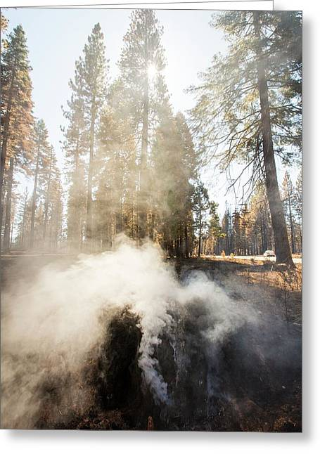 The King Fire Greeting Card
