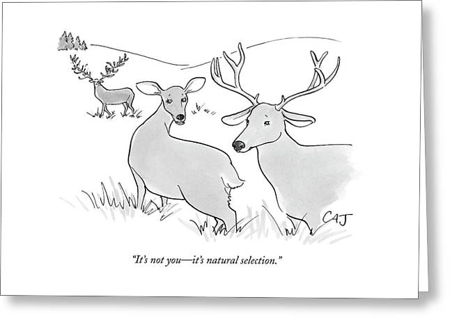 It's Not You - It's Natural Selection Greeting Card