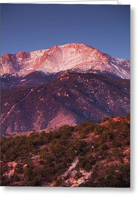Usa, Colorado, Colorado Springs, Garden Greeting Card