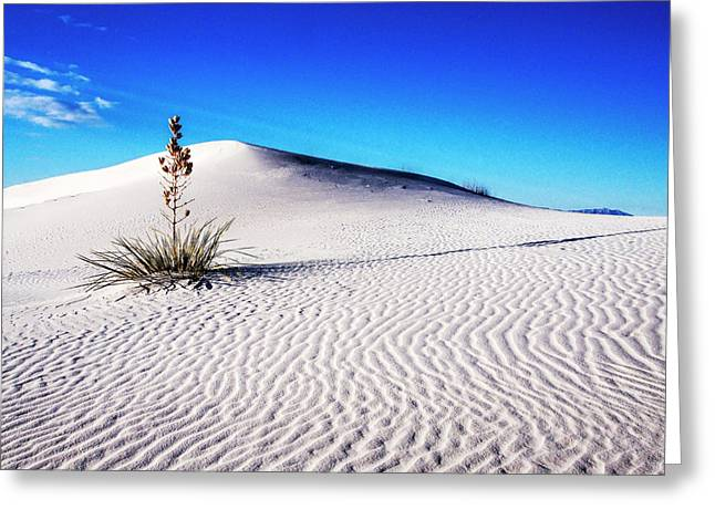 Usa, New Mexico, White Sands National Greeting Card by Terry Eggers