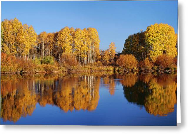 Usa, Oregon, Deschutes National Forest Greeting Card