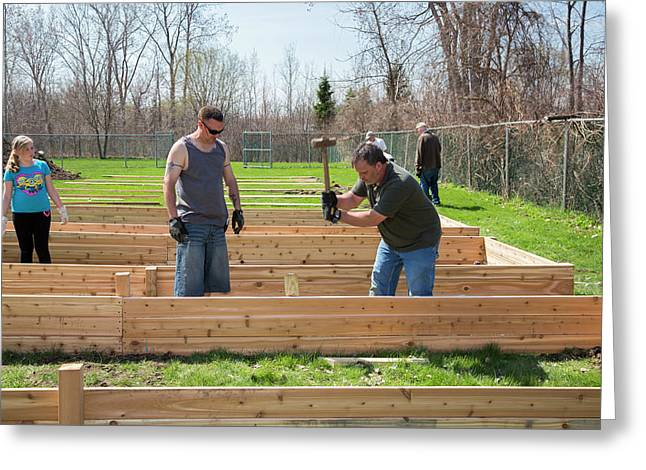 Volunteers Building Raised Beds Greeting Card