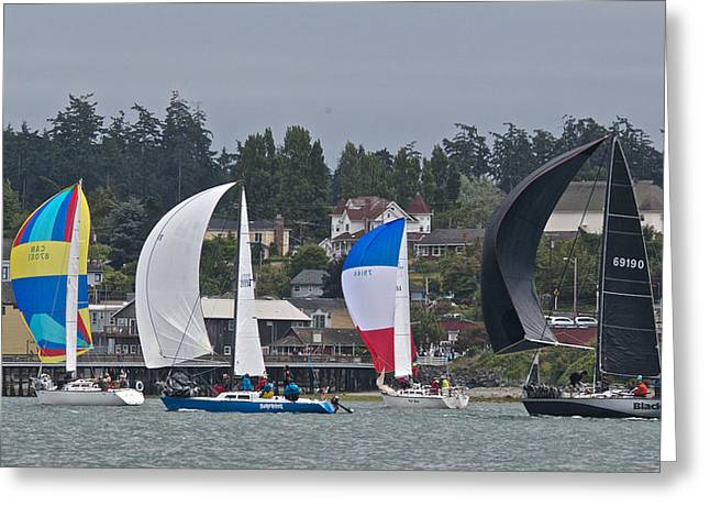 Whidbey Island Race Week Greeting Card