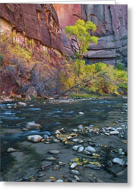 Usa, Utah, Zion National Park Greeting Card