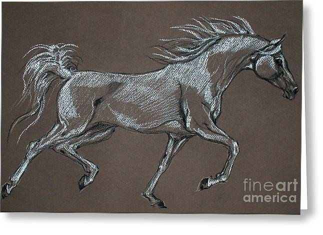 Arabian Horse  Greeting Card by Angel  Tarantella
