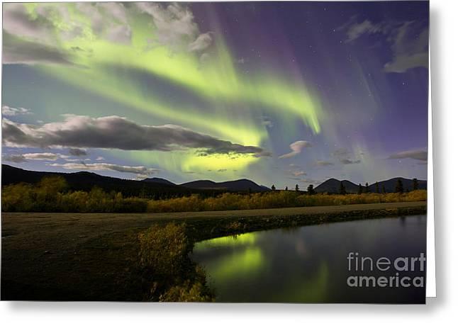 Aurora Borealis With Moonlight At Fish Greeting Card by Joseph Bradley