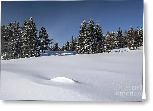 Beautiful Winter Landscape Greeting Card by IB Photo