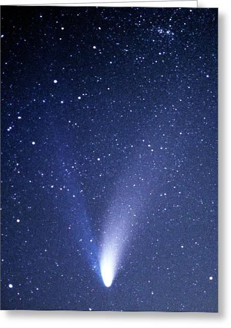 Comet Hale-bopp Greeting Card by Detlev Van Ravenswaay