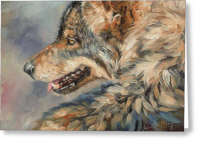 Grey Wolf Greeting Card by David Stribbling