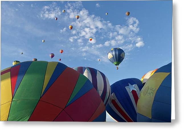 Mass Ascension At The Albuquerque Hot Greeting Card by William Sutton