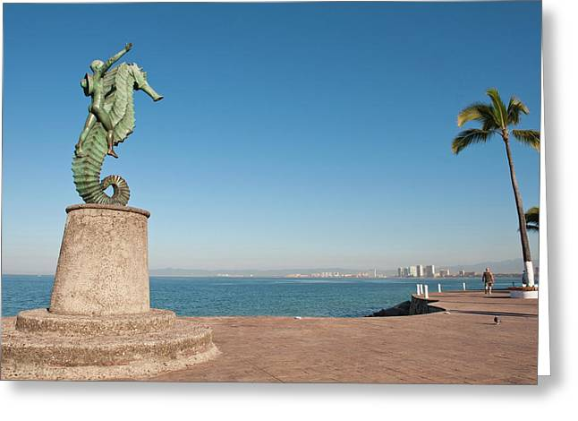 Mexico, Puerto Vallarta Greeting Card by Michael Defreitas