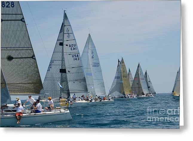 Sailboat Race Greeting Card