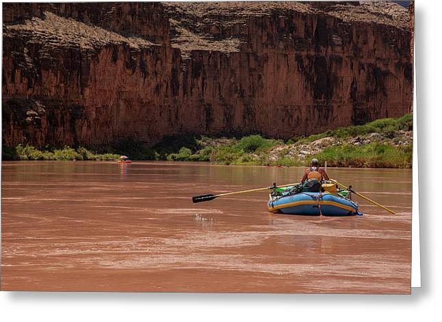 Usa, Arizona, Grand Canyon National Park Greeting Card