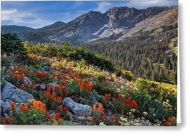 Wasatch Mountains Of Utah Greeting Card