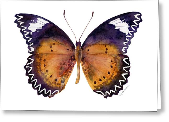 87 Cethosia Cyane Butterfly Greeting Card
