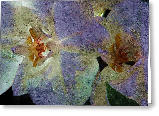 Lavender Orchids Greeting Card