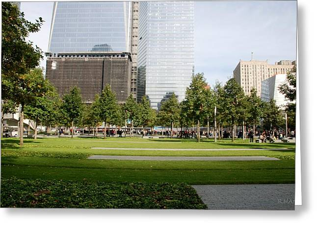 9/11 Grass Greeting Card by Rob Hans