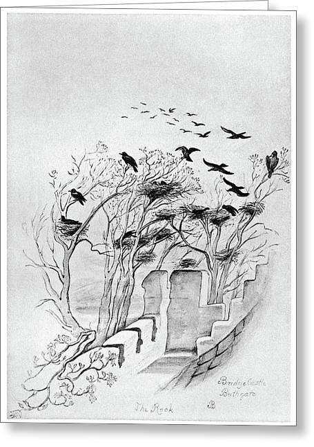 Blackburn Birds, 1895 Greeting Card
