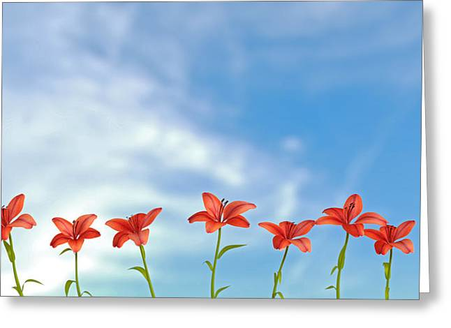 9 Lilies Greeting Card