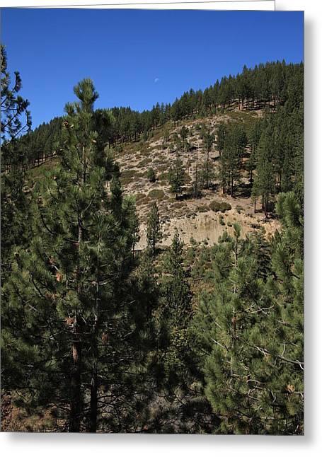 Mountainside Near Lake Tahoe Greeting Card by Frank Romeo