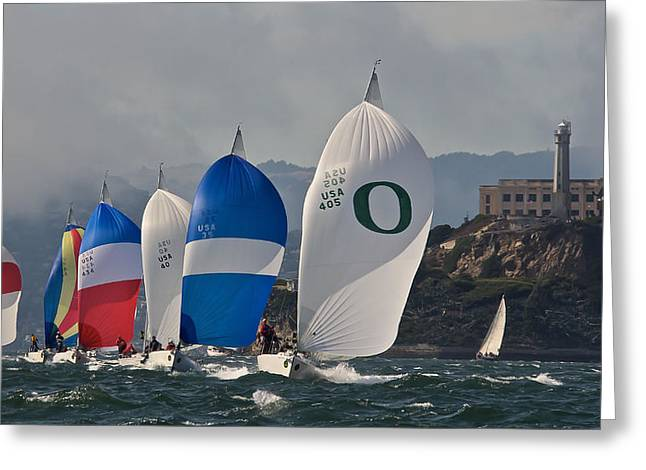 San Francisco Spinnakers Greeting Card by Steven Lapkin
