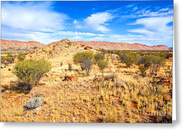 West Mcdonnell Ranges Larapinta Drive Greeting Card
