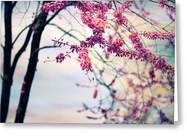 Spring Blossom Greeting Card by Jessica Jenney