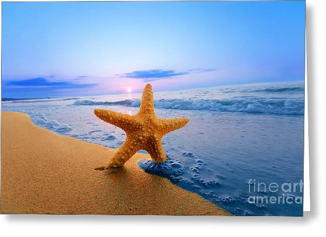 Starfish Greeting Card by Michal Bednarek