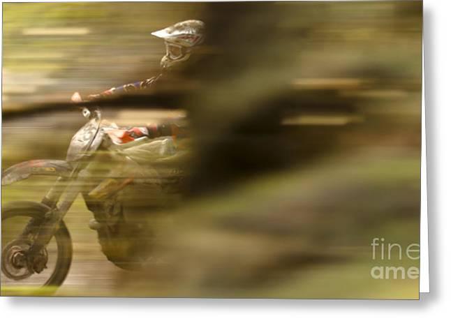 Through The Woods Greeting Card by Angel  Tarantella