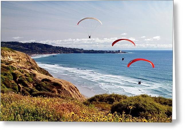 Usa, California, La Jolla Greeting Card by Ann Collins