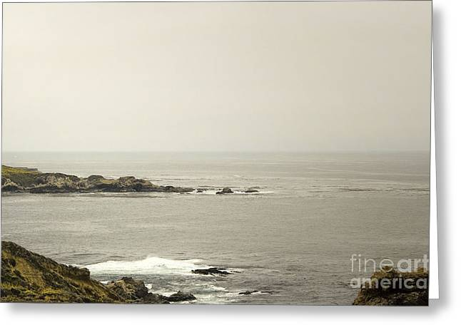 906 One Foggy Day  Greeting Card by Chris Berry