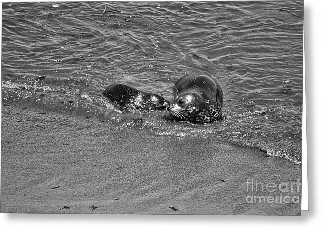 916 Bw I Want To Eat- Mom Greeting Card by Chris Berry