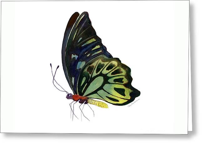 97 Perched Kuranda Butterfly Greeting Card by Amy Kirkpatrick
