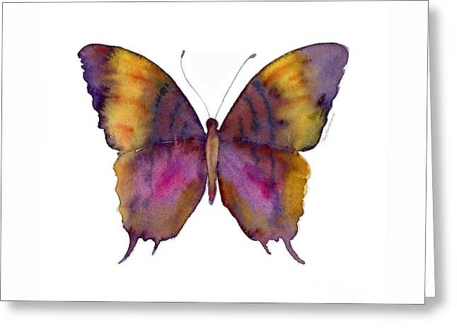 99 Marcella Daggerwing Butterfly Greeting Card by Amy Kirkpatrick