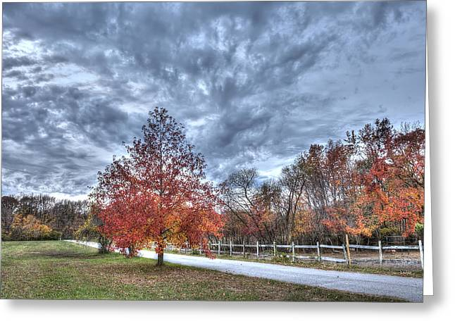 A Backroad In The Rural Countryside Of Maryland During Autumn Greeting Card